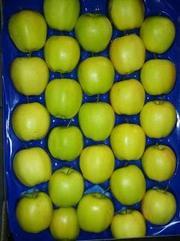 Польские яблоки компания EUROHARVEST