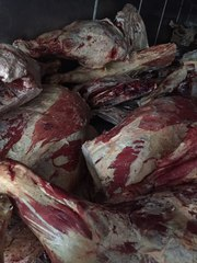 Мясо (Говядина,  Свинина,  Баранина) оптом из Хакасии от производителя
